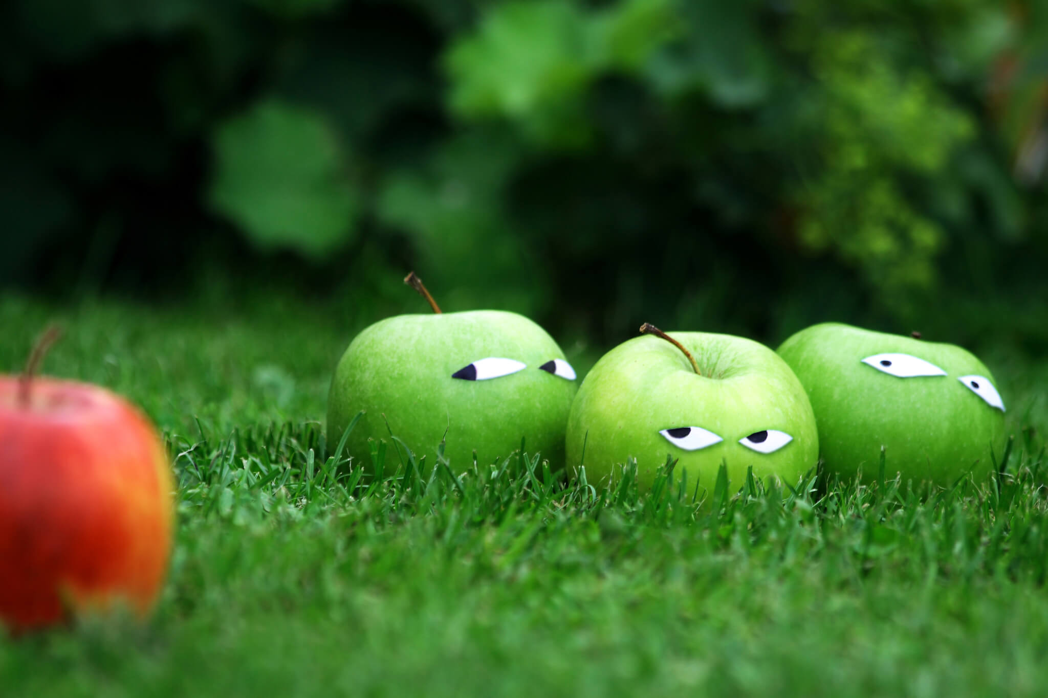 three green apples staring at a red apple